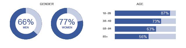 Facebook Demographic Infographic