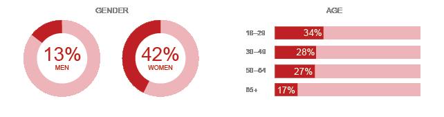 Pinterest Demographic Infograph