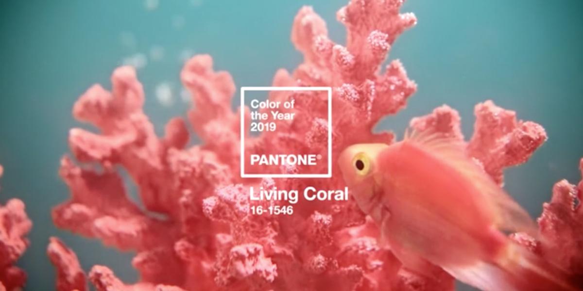 2019-Pantone-Coral